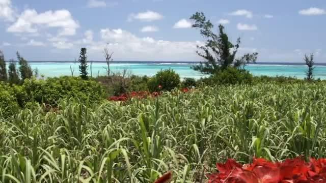 一本道PV 南国の楽園ヨロン島